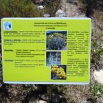 """Diaporama """"Compléments botaniques du PR3"""""""