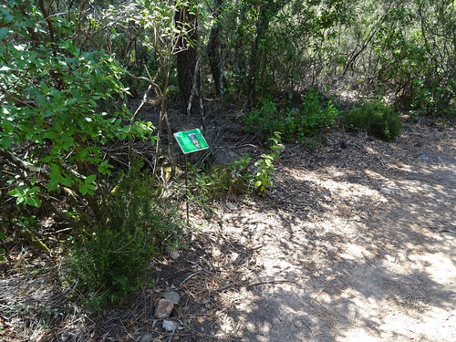 Panneaux botaniques : Laurier-tin