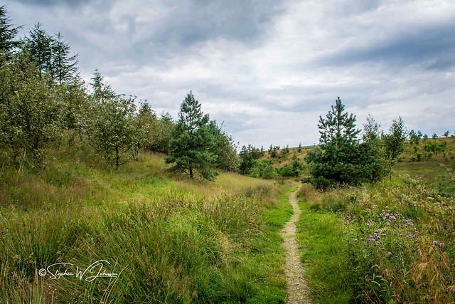 SJ2_1063 - Lancashire countryside