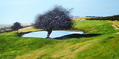 """Downland Dew Pond"""