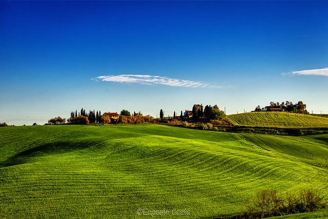 la campagna di Orciano Pisano / the countryside of Orciano Pisano