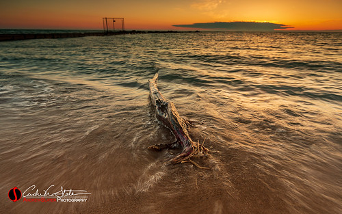 andrewslaterphotography atwaterbeach beach branch greatlakes lakemichigan log mke mkemycity milwaukee outdoors sand shorewood sunrise wisconsin canon water dance morning discoverwisconsin travelwisconsin