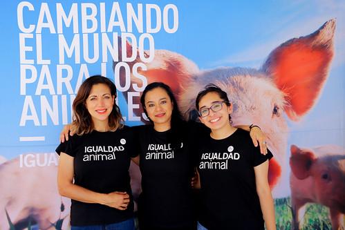 MX- 2,3,4/08/2019- iAnimal en Tijuana Veggie Fest