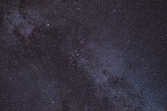 Star clouds of Cygnus