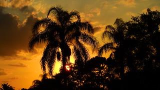 Sunset May 16th