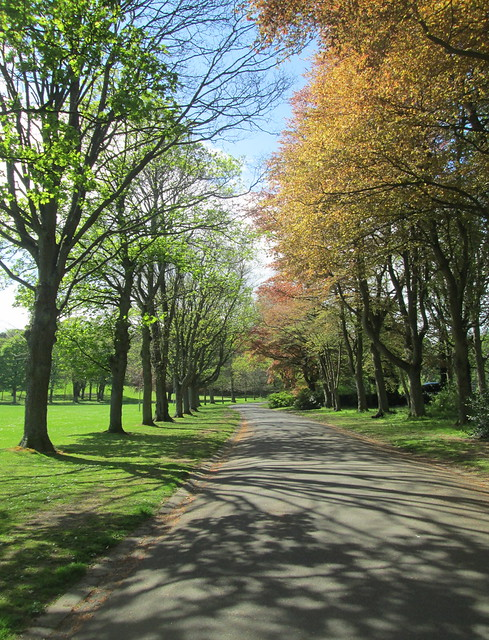 Path, Beveridge Park, Kirkcaldy