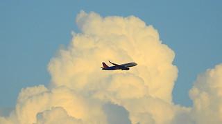 Delta flight into SRQ