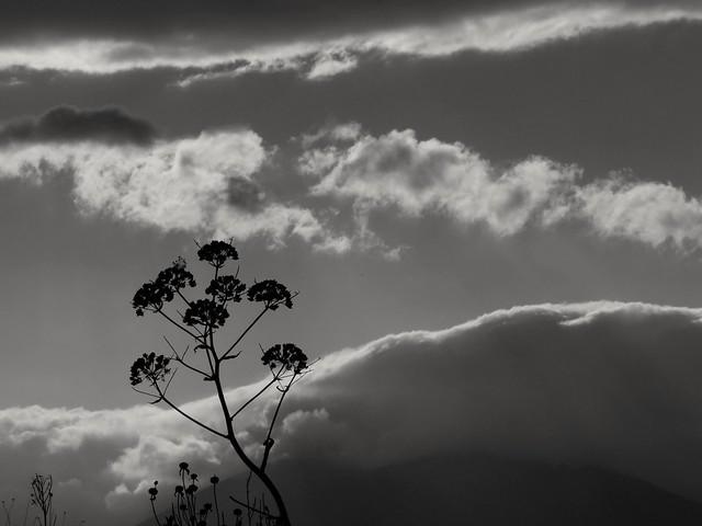 Jusqu'au ciel..Up to the sky..