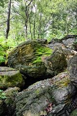 Boulders in Louisiana