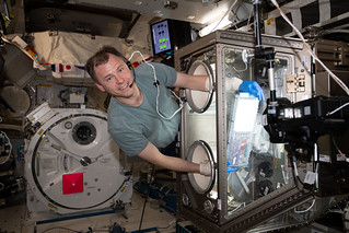 NASA astronaut Nick Hague works inside the Japanese Kibo laboratory module | by NASA Johnson
