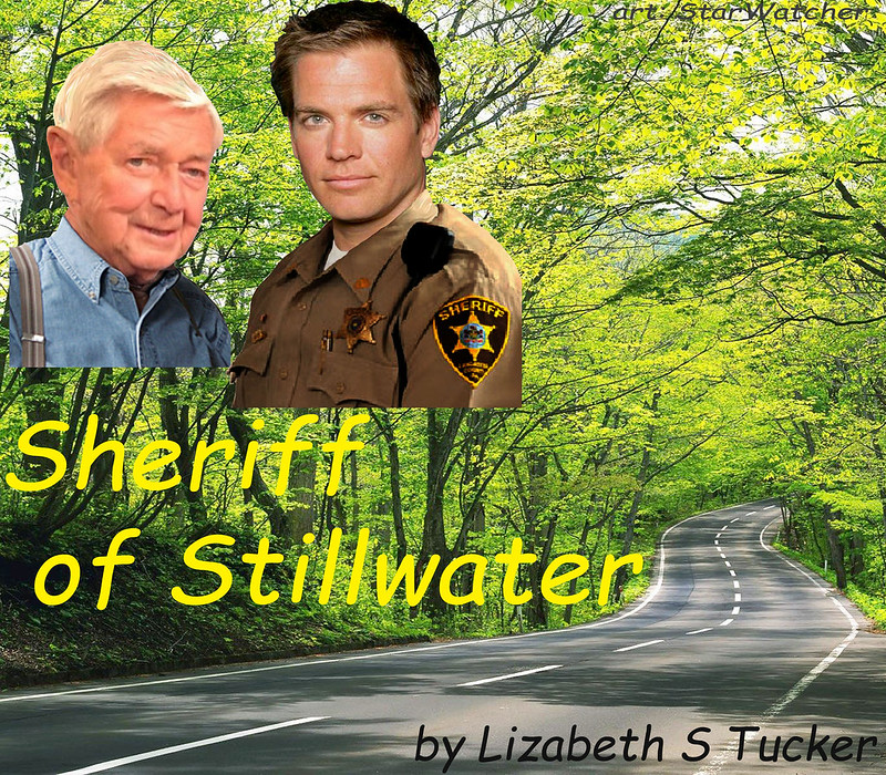 Isolated road curving into distance between leafy green trees.  In upper left corner, headshots of Tony DiNozzo in a sheriff uniform and Jackson Gibbs gaze at reader.  Text reads 'Sheriff of Stillwater' by Lizabeth S Tucker.