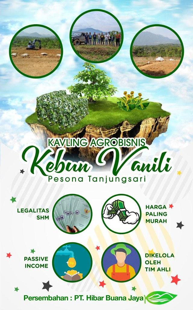 Kavling Agrobisnis Kebun Vanili