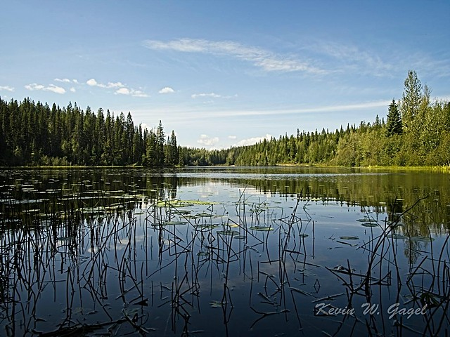 Camp Lake - Prince George 01