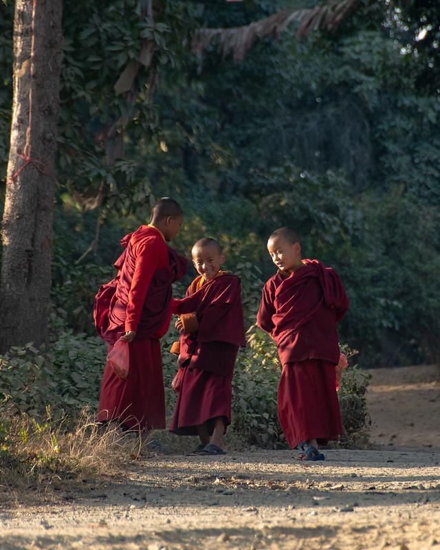 Dans la forêt à côté du monastère