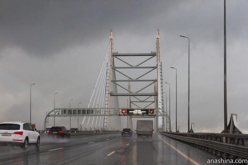 Вантовый мост через Корабельный фарватер, ЗСД, Санкт-Петербург