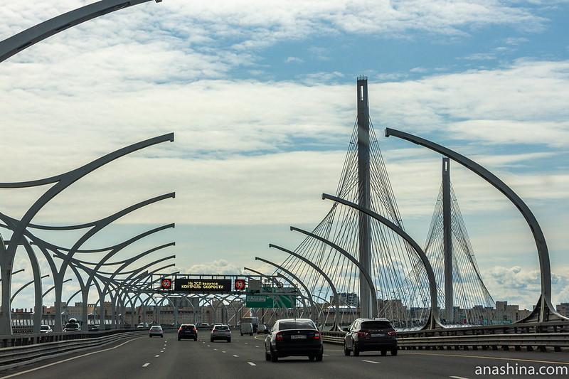 Вантовый мост через Петровский фарватер, ЗСД, Санкт-Петербург