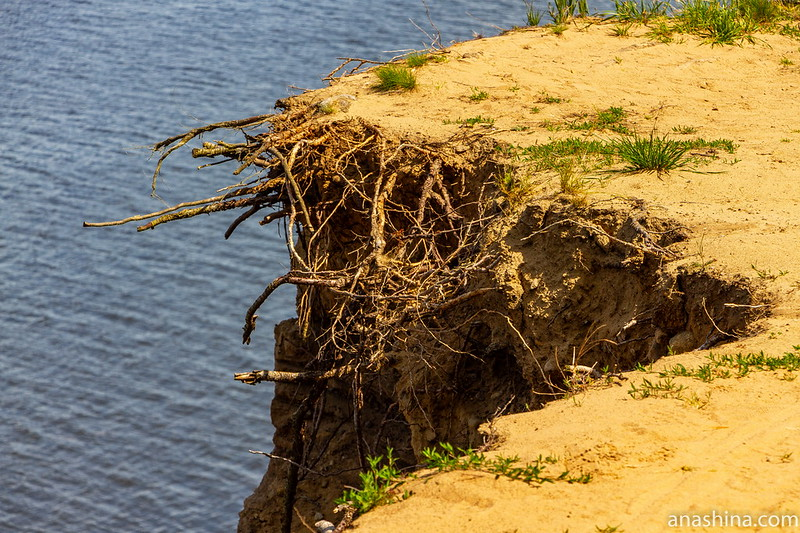 """Финский залив, форт """"Красная Горка"""", обрыв"""