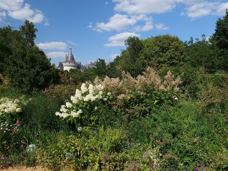 Jardin du Château de Chaumont 48479698061_c308b6a64d_c