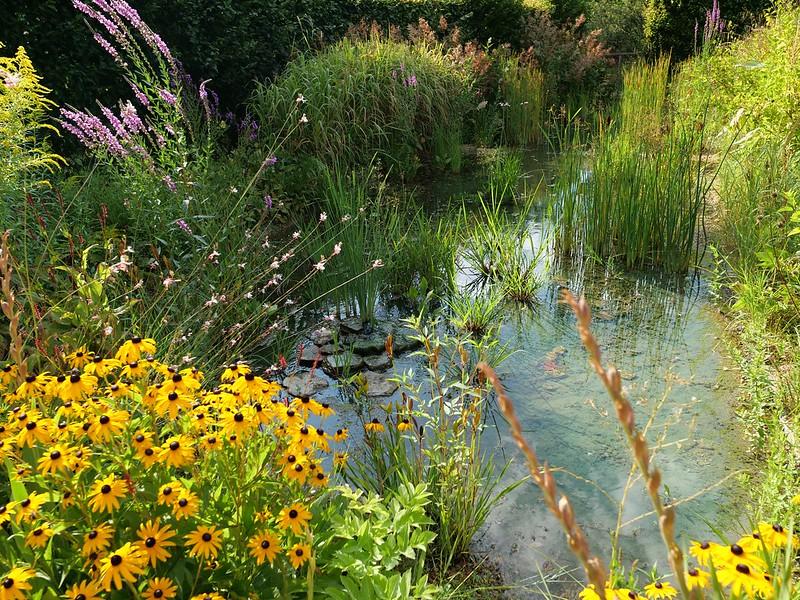 Jardin du Château de Chaumont 48479784047_bbb1436ac4_c