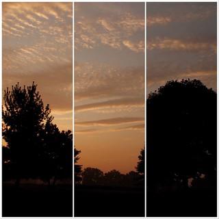 Week 32 - Artistic Tryptich - Dawn
