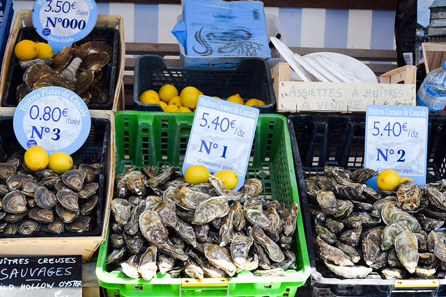 Cancale Oysters in Brittany