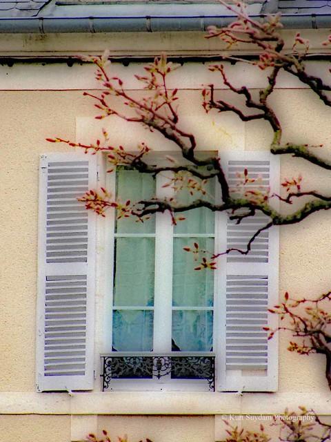 view from the garden - Jardin des Pres-Fichaux