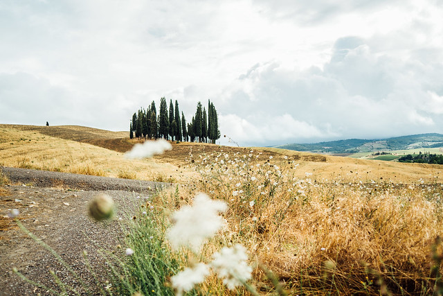 Val d'Orcia groove VII [explored]