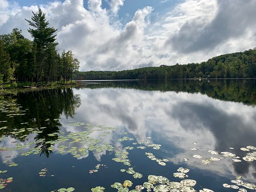 Bellows Lake, Parsons