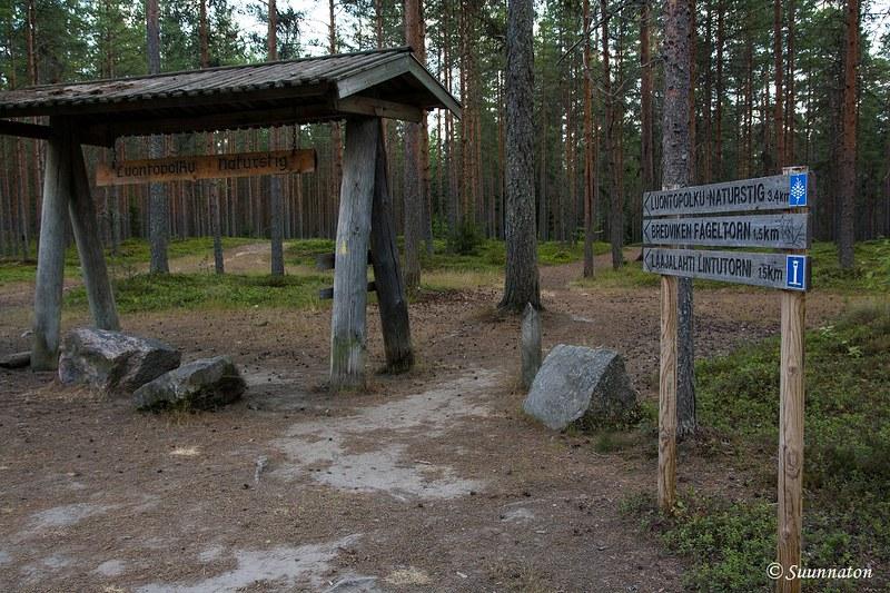 Kokkola, Laajalahden luontopolku | Matkablogi Suunnaton
