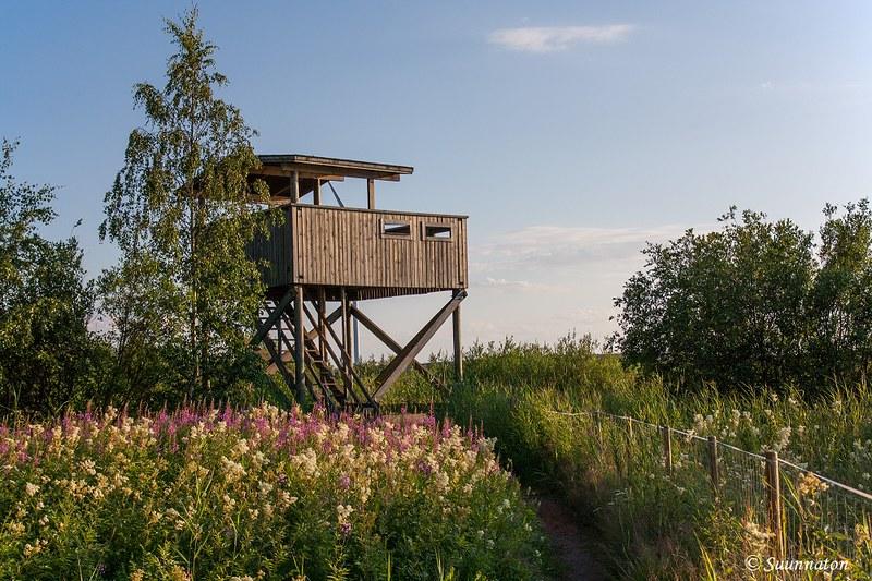 Kokkolan matkakohteet, Harriniemen lintutorni | Matkablogi Suunnaton