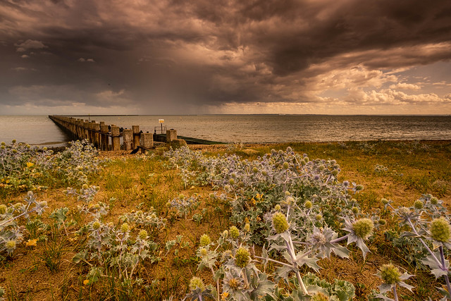 Essex Shoeburyness  East Beach