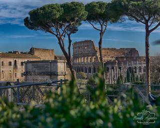 Omnium rerum principia parva sunt ❤️📷 El principio de todas las cosas es pequeño.   #coliseo #coliseum #anfiteatro #romano #ciudad #city #roma #italia #sombras #shadow #turismo #tourism #viajar #travel #paisaje #landscape #photography #photog