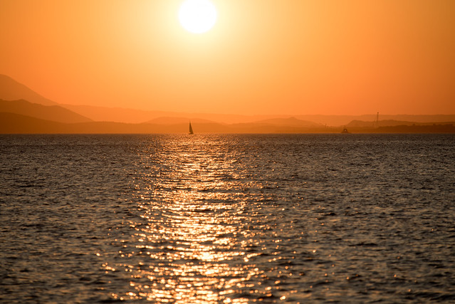 sailing by the sunset