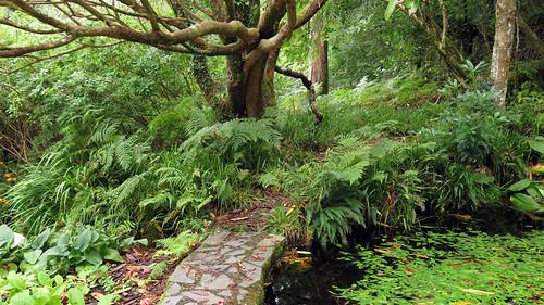 A vista of castle garden in Glenveagh National Park in Ireland
