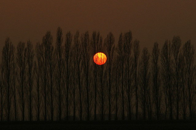 Po Plain sunset ©twe2011☼