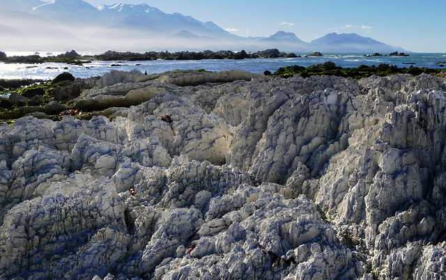 Kiakoura coastline. NZ