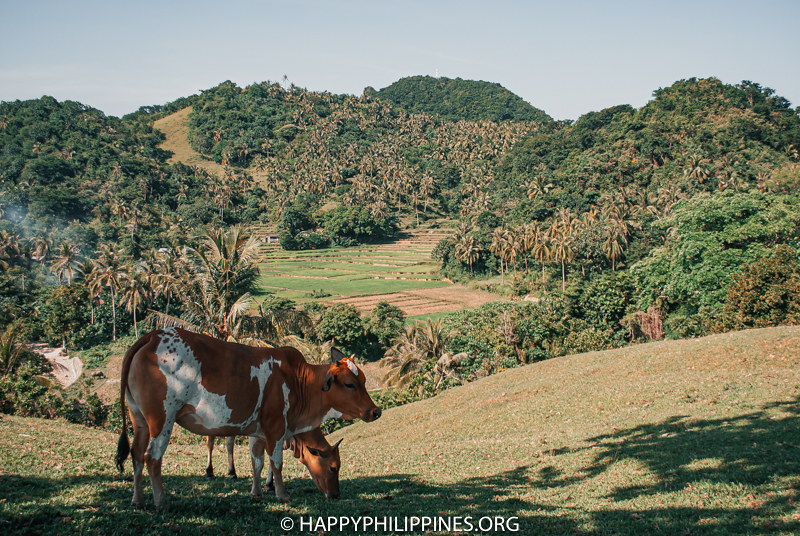 CATANDUANES travel guide