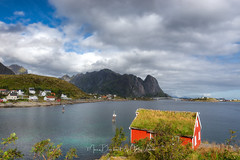 Living on Reine fjord