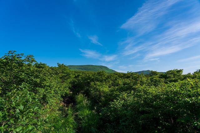 前方に東焼石岳