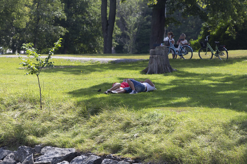 Lazy Day at Djurgården