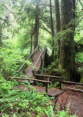 Beaver Pond Bridge