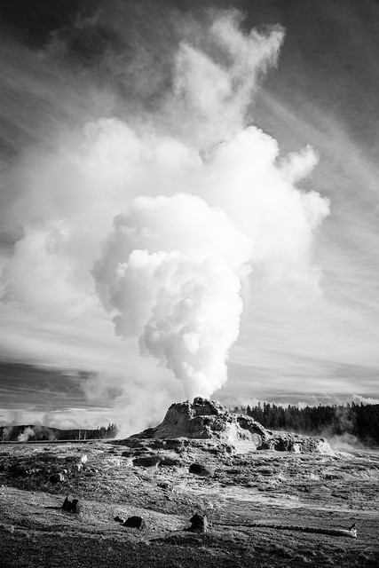 Castle Geyser, Yellowstone National Park. May, 2019.
