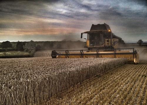 farm24 harvest19 combine harvester farm agriculture sunset dust newholland wheat