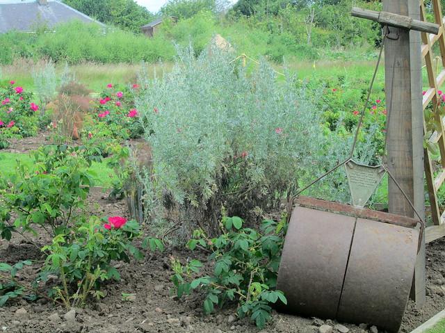 Secret Herb Garden