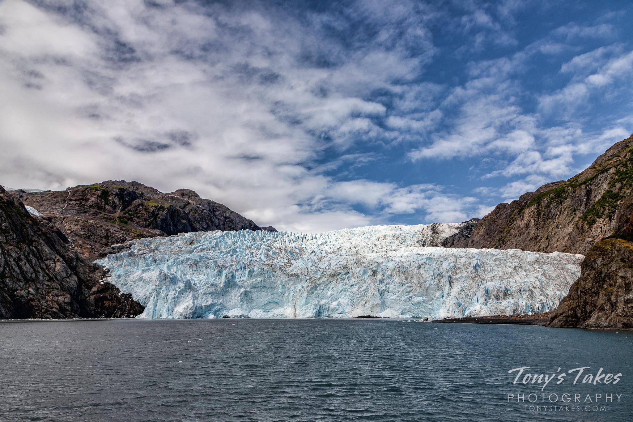 Big glacier, little birds