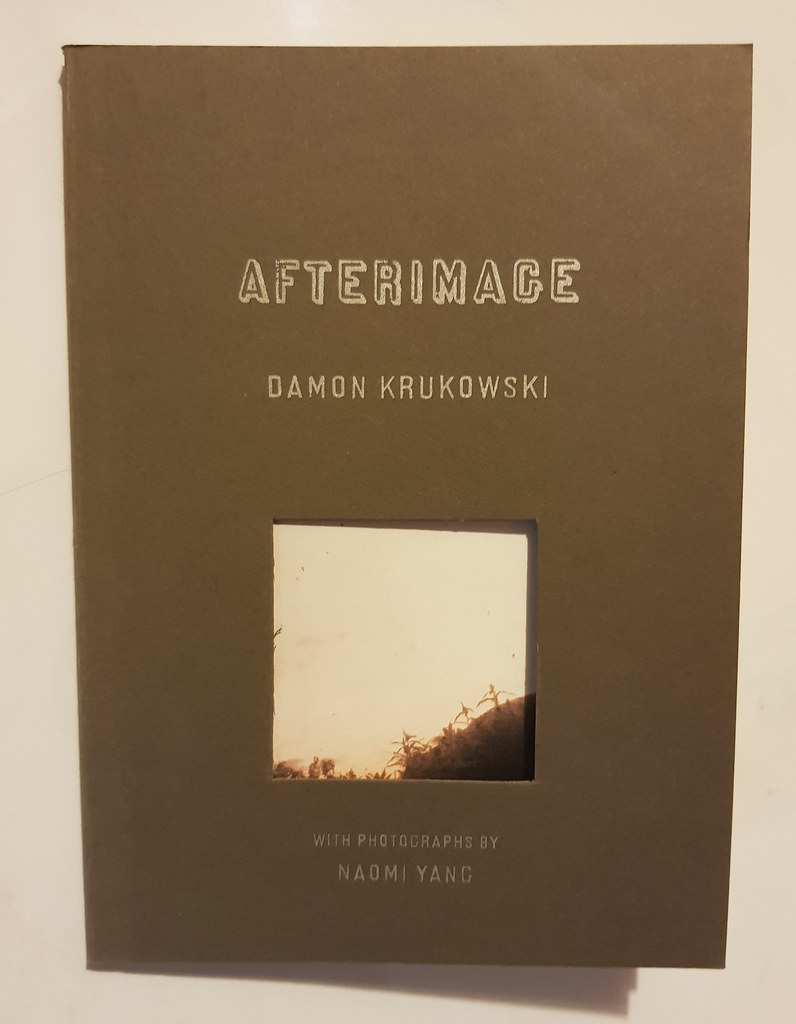 Afterimage by Damon Krukowski