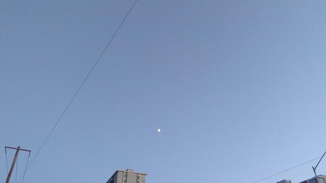 Moon over Dufferin Grove #toronto #blue #sky #moon #evening #bloorcourt #bloorstreetwest #dufferingrove
