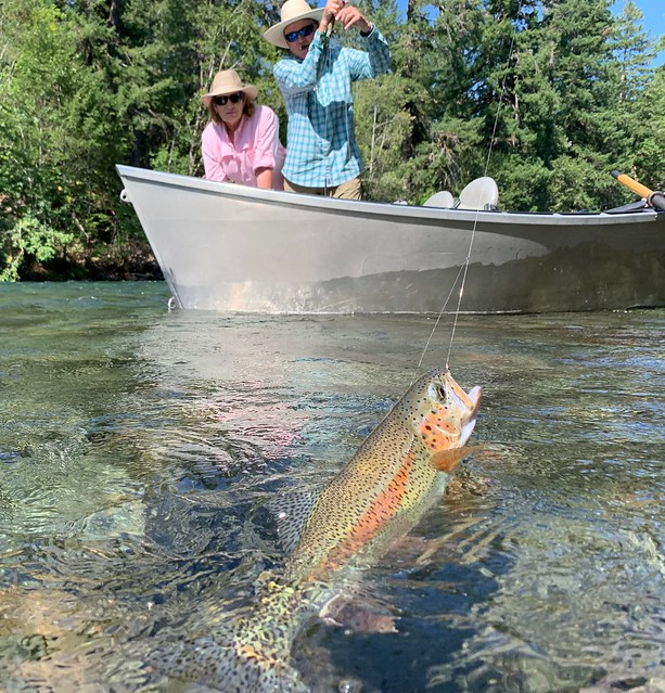 The Caddis Fly: Oregon Fly Fishing Blog | McKenzie River fly