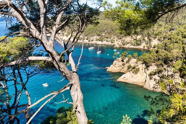 Calanque du Port d'Alon à saint-Cyr-Sur-Mer - Provence - Var - -1L8A9722