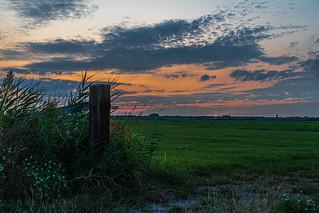Polder landscape after sunset